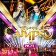Banda Calypso 15 Anos - Vol. 01