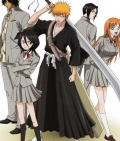 Bleach (anime)