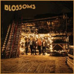Blossoms letras