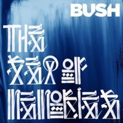 Bush letras