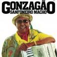 Sanfoneiro Macho