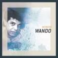 Série Retratos: Wando